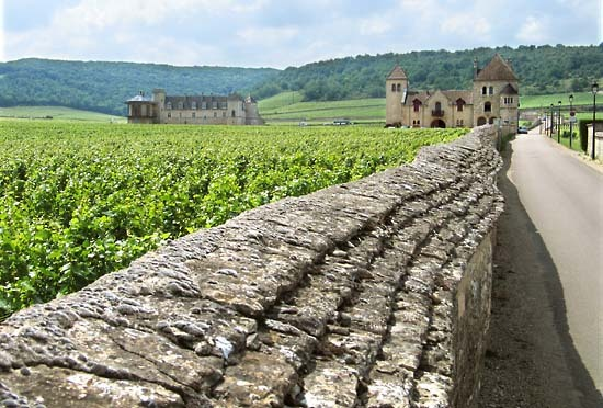 Burgun_wine_route_clos_vougeot