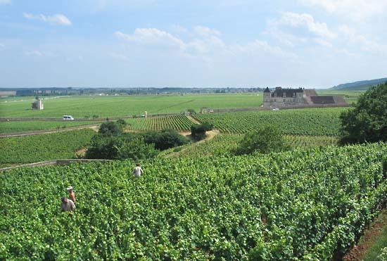 Burgun_wine_route_amoureuses