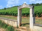 Burgun_wine_route_chevalier_montr_2