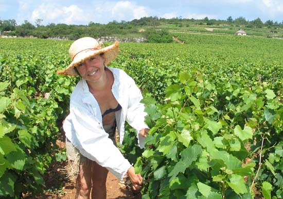 Burgun_wine_route_chr_pichenot_then