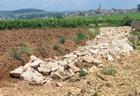 Burgun_wine_route_drain_meursault