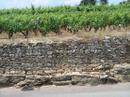 Burgun_wine_route_meursault_table