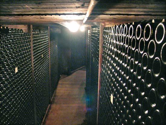 Terrebrune_cellar
