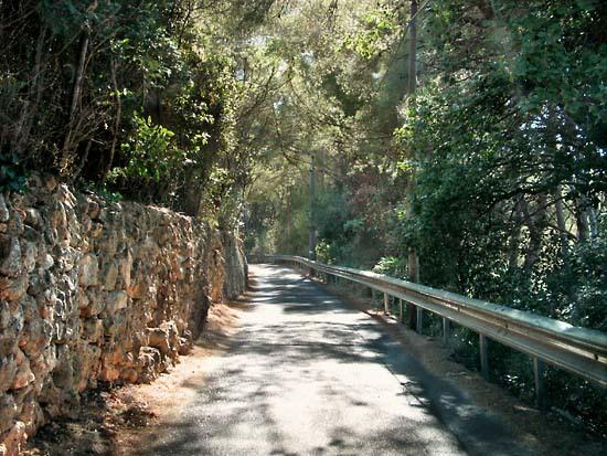 Terrebrune_route