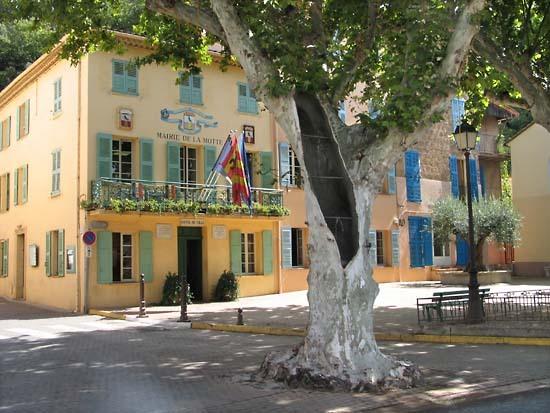 Esclans_mairie_platane