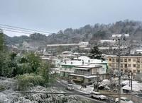 Himonoya_sake_neige
