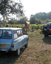 1micro_harvest_vineyards