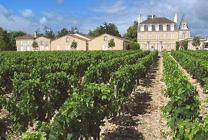 Wine Tasting, Vineyards, in France - Pauillac